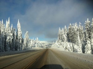 We had a snowy drive back from the Okanagan. Look at the trees on the summit, completely covered!